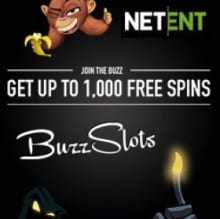 BuzzSlots Casino Review: CLOSED!