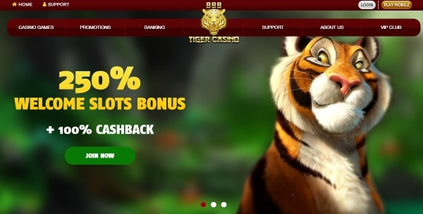 250% welcome bonus and 100% extra