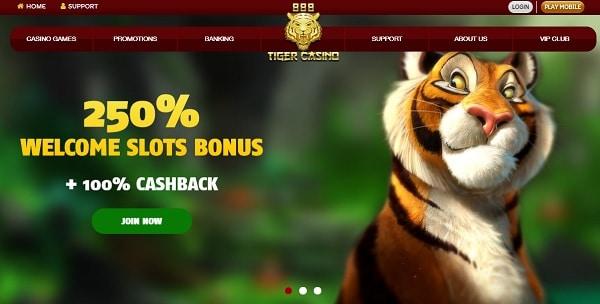250% welcome bonus and 100% extra