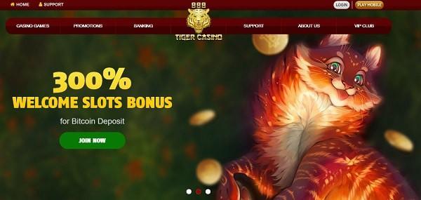 300% bonus and free spins on Bitcoin deposit