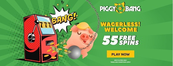 55 Free Spins without wagering conditions